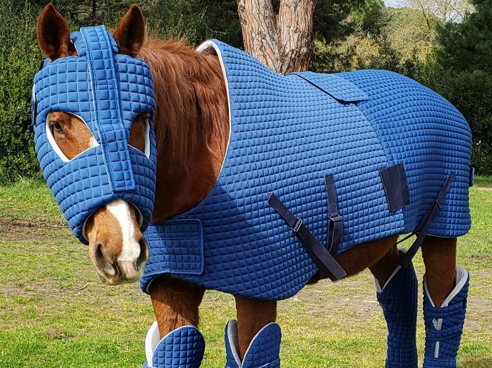 Ironhorse is a protective armour for horses